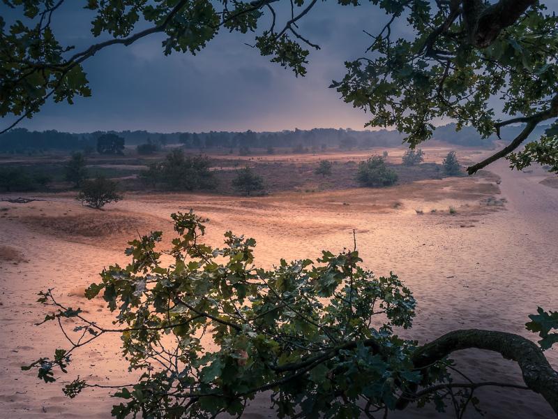 Prachtige fotolocaties inNoord-Brabant